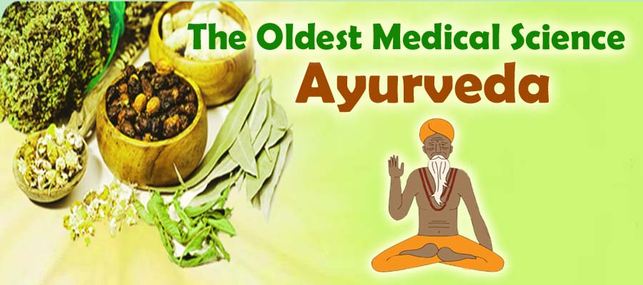 Image result for ayurveda images